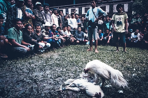 Indonesia (365)-2.jpg
