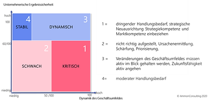 der AmmonConsulting Straction2Go Check