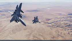 eagle_duo_1.png