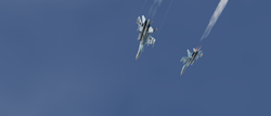 flanker_duo_1.png