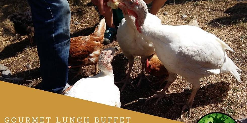 Erntendankfest mit den Turkeys