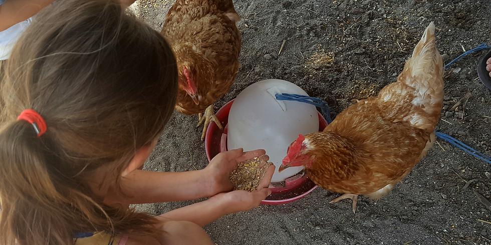 Vegan Family Potluck
