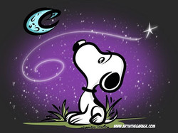 12-3-16 Snoopy Nights