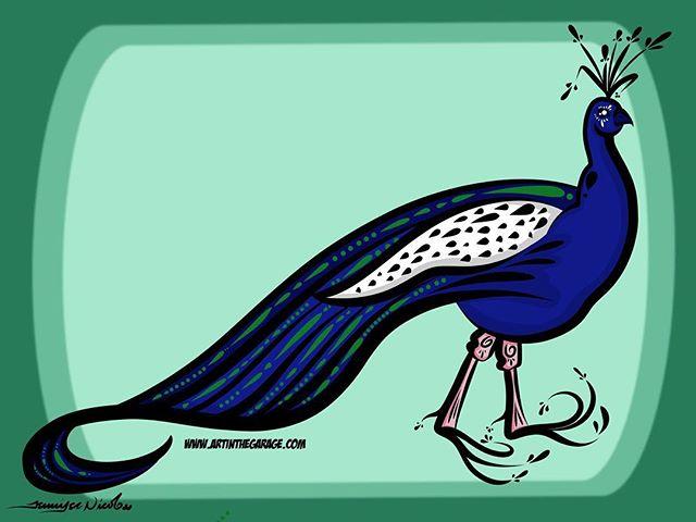 7-14-16 Peacock
