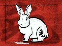 3-2-20 Rabbit