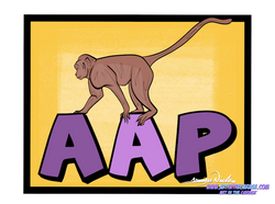 4-27-21 AAP-Monkey