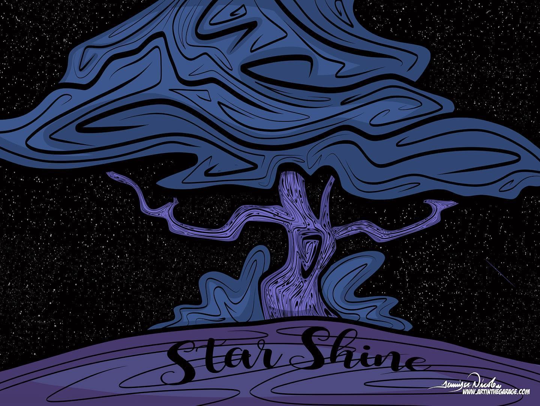 4-12-20 Star Shine