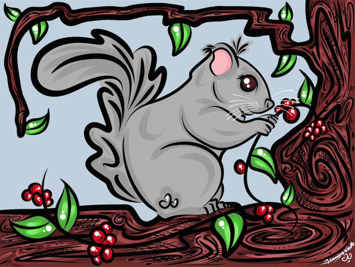 6-28-14 Squirrel.png