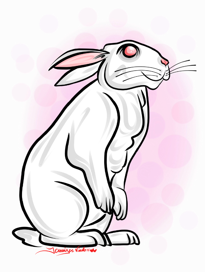 1-25-13 Bunny Finished.png