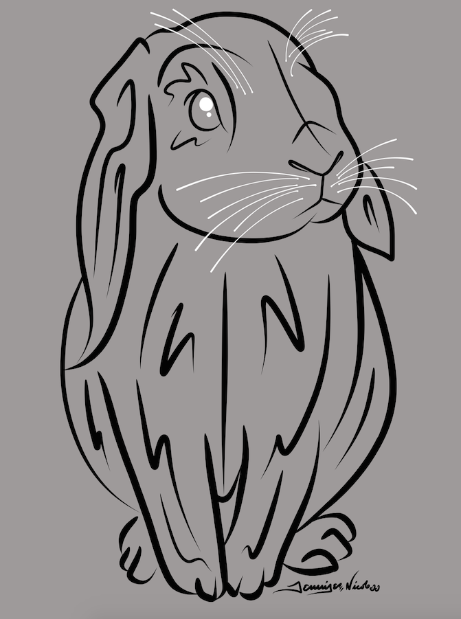 11-24-14 Bunny.png