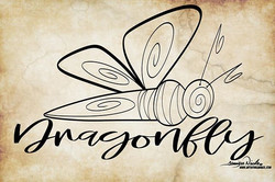 8-25-19 Dragonfly