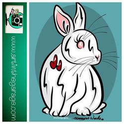7-9-16 Always Follow White Rabbits