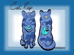 12-9-18 Cat Nap Concept