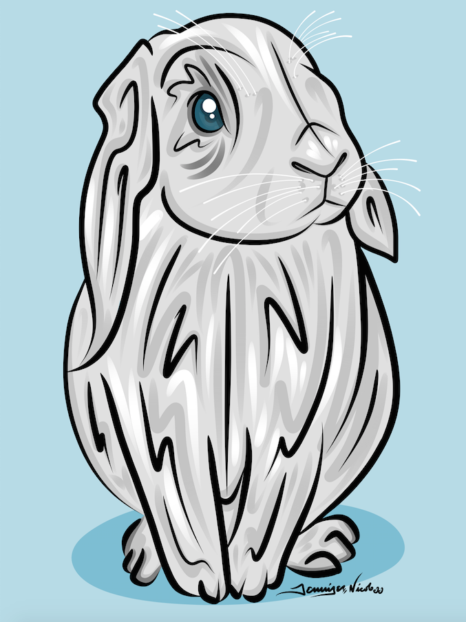 11-25-14 Bunny.png