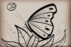 6-7-19 butterfly Outline