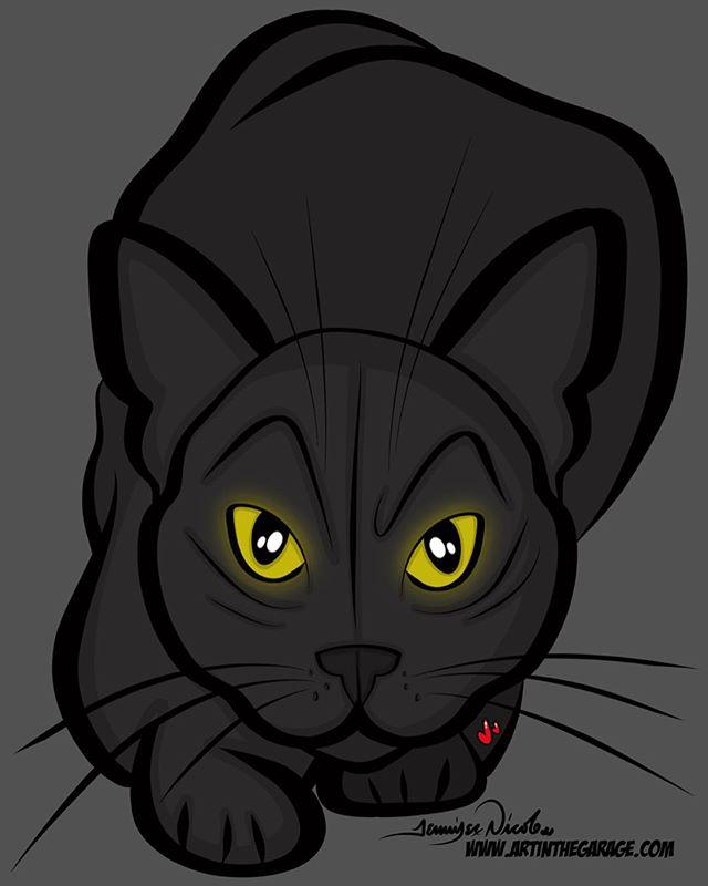 1-23-19 Black Cat