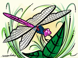 11-30-14 Dragonfly.png