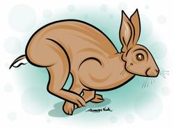 4-16-14 Run Rabbit Run.png