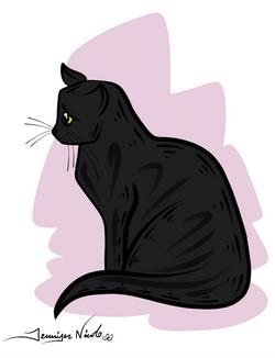 2-13-15 Black Cat Pink Background