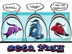 9-14-15 Beta Fish