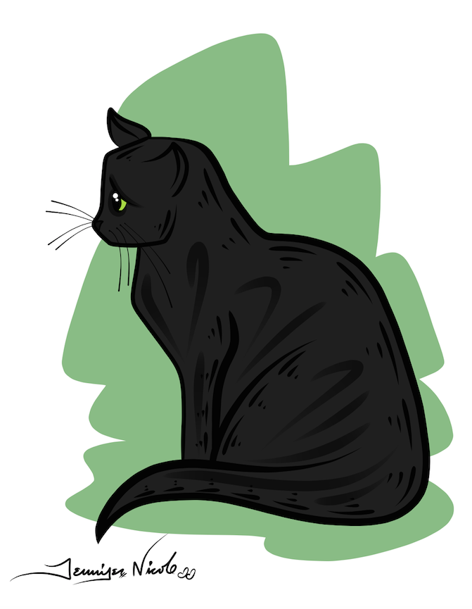 2-13-15 Black Cat Green Background