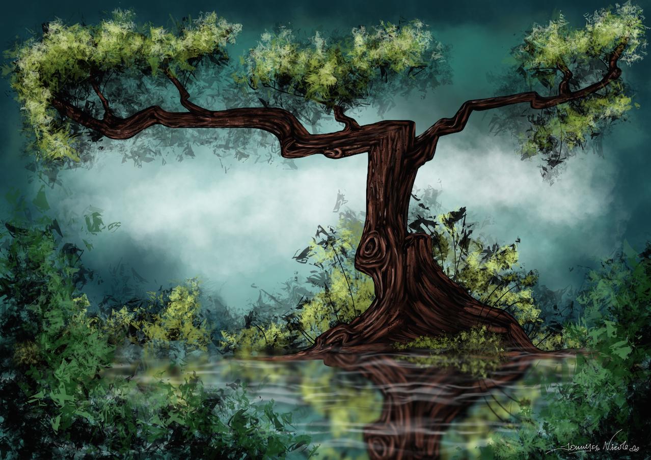 1-15-15 Swamp Tree