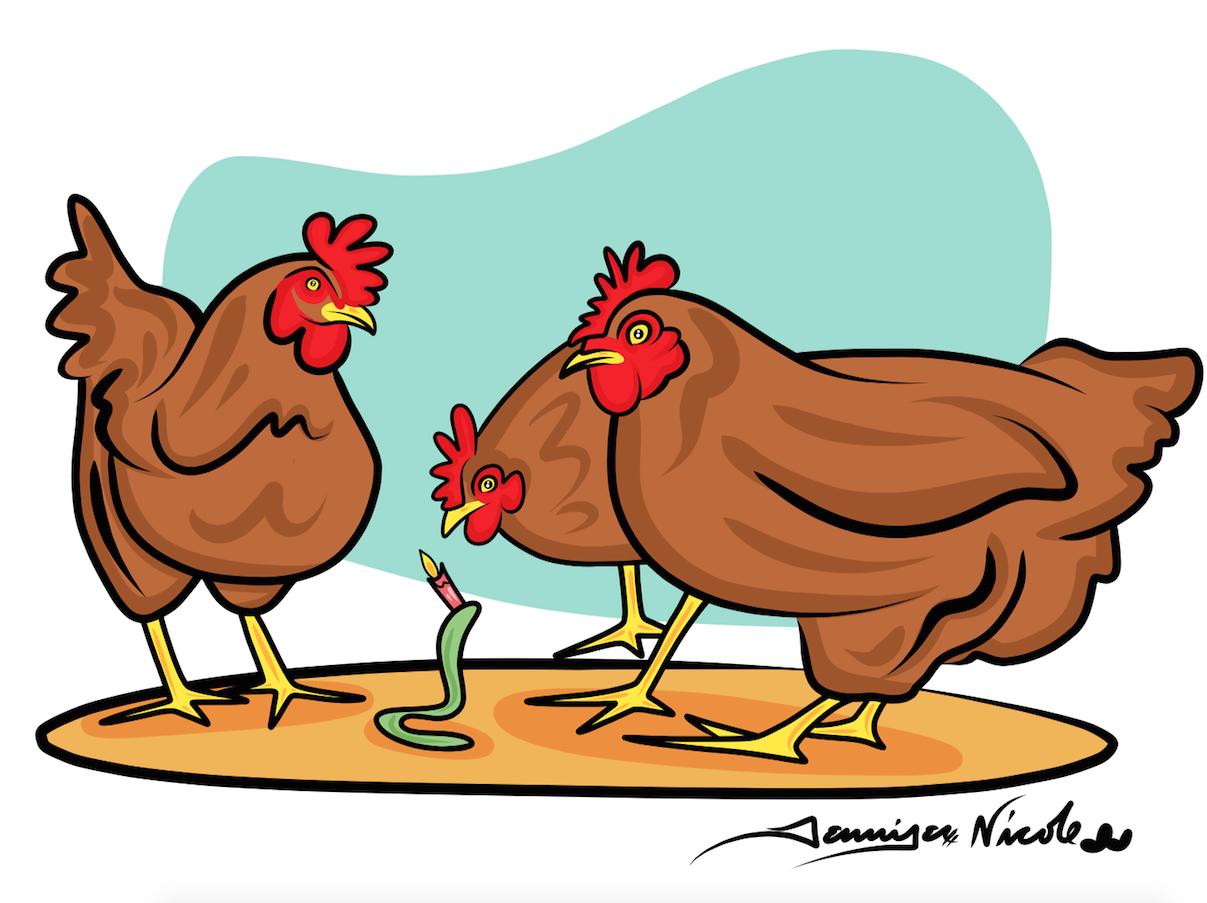 1-9-15 Birthday Chickens