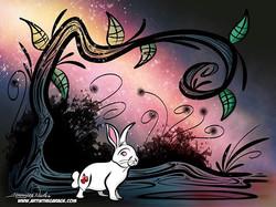 12-27-16 White Rabbits