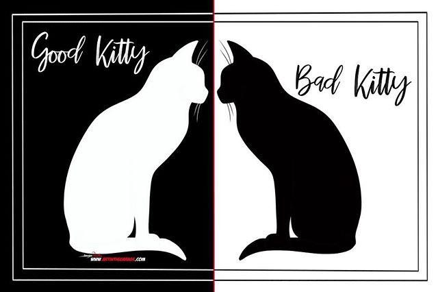 3-27-19 Good Kitty Bad Kitty