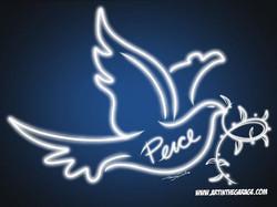 11-6-17 Peace