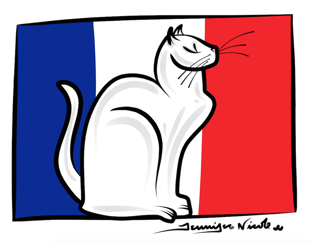 1-12-15 French White Cat