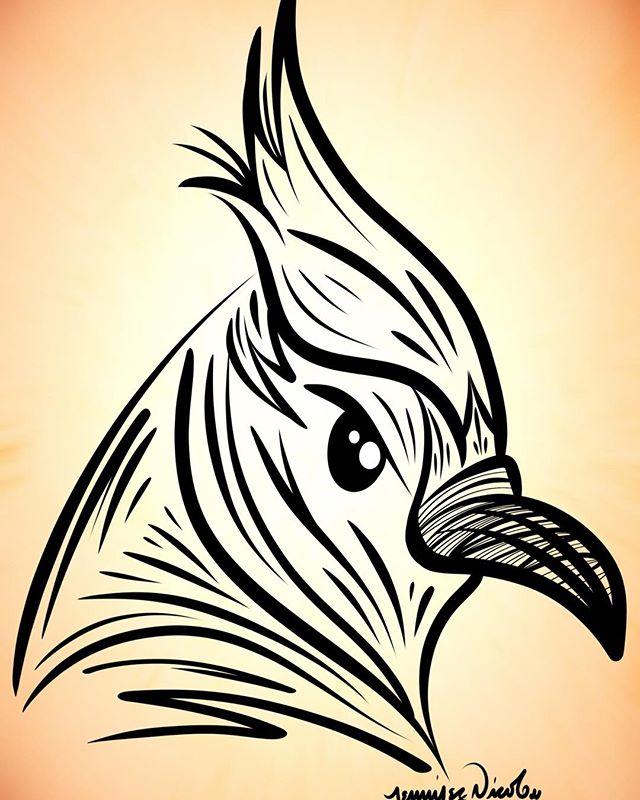 5-28-17 Blue Jay