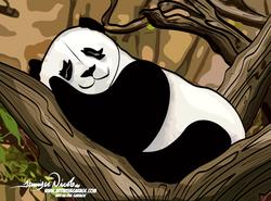 4-24-21 Panda