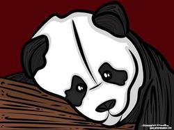 6-13-17 Panda