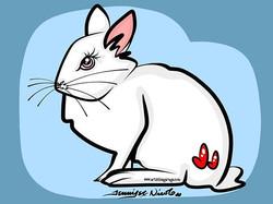 5-30-16 White Rabbit