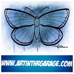 6-24-20 A pretty Butterfly