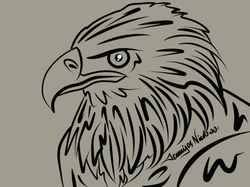 5-10-14 Eagle.png