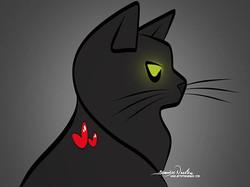 9-24-19 Black Cats Rule..
