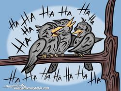 5-12-17 Evil Birdies