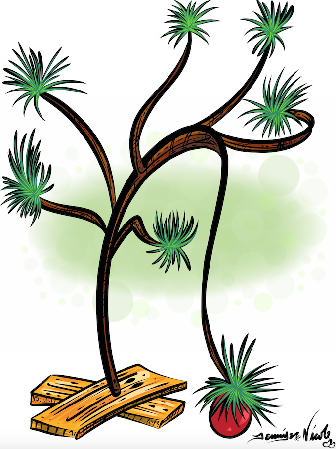 12-8-14 Charlie Brown's Christmas Tree.png