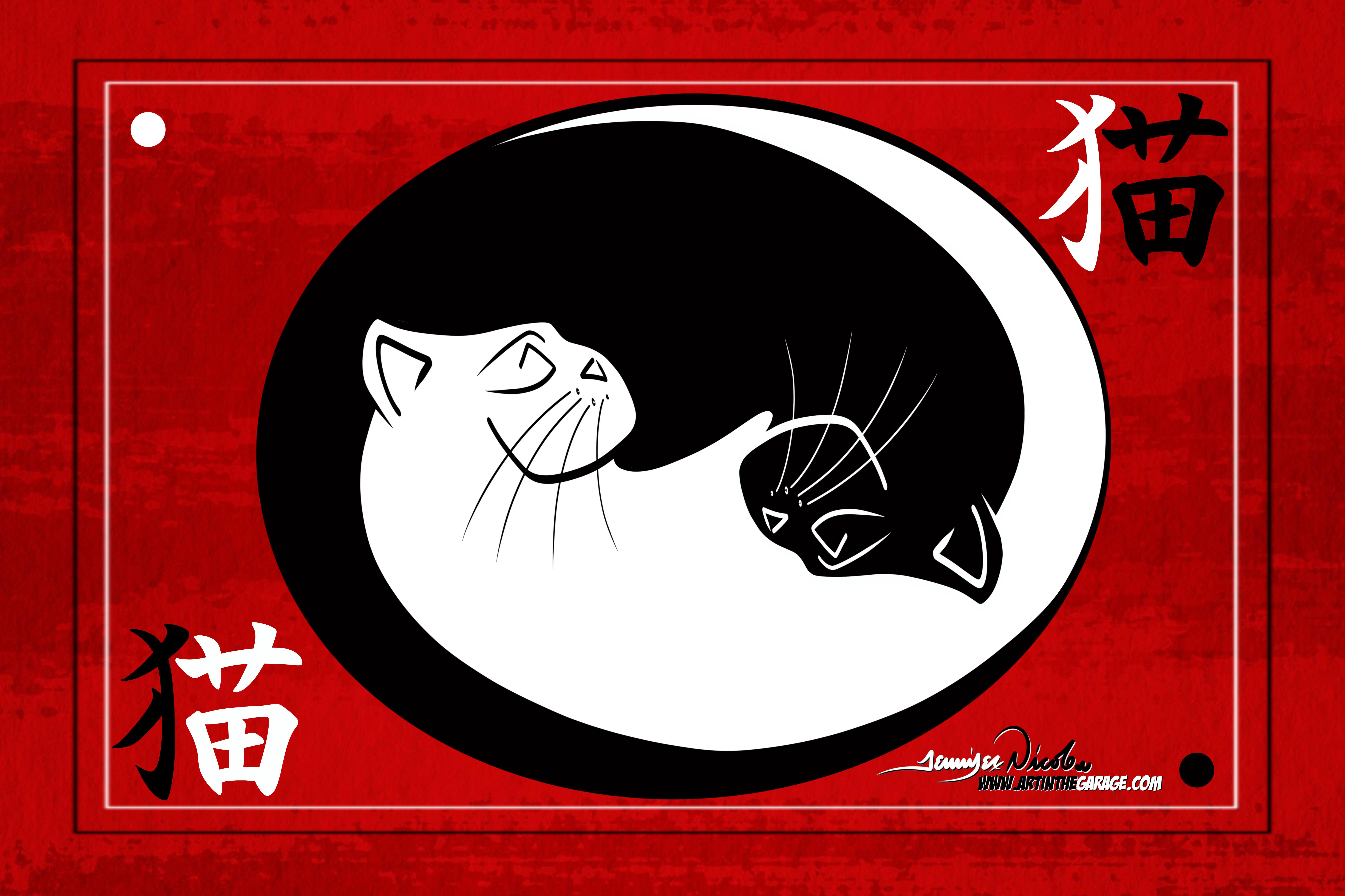 12-12-19 Yin Yang Cat