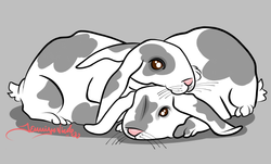 2-6-14 Bunny Love Finished.png