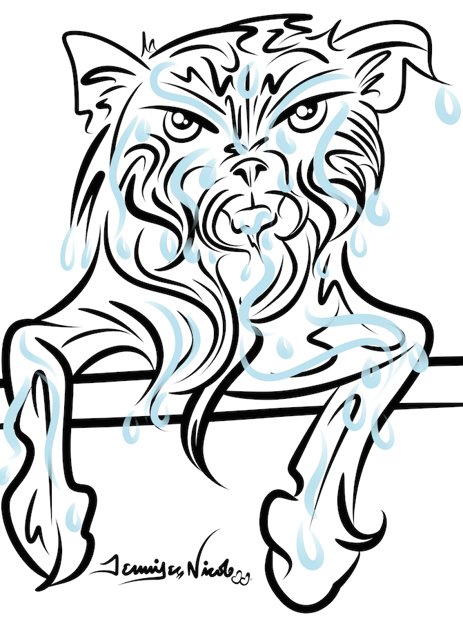 6-9-14 Washing A Cat Sucks.png