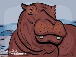 27-20 Hippopotamus