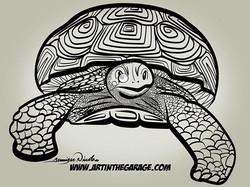 4-19-18 Burt The Turtle.