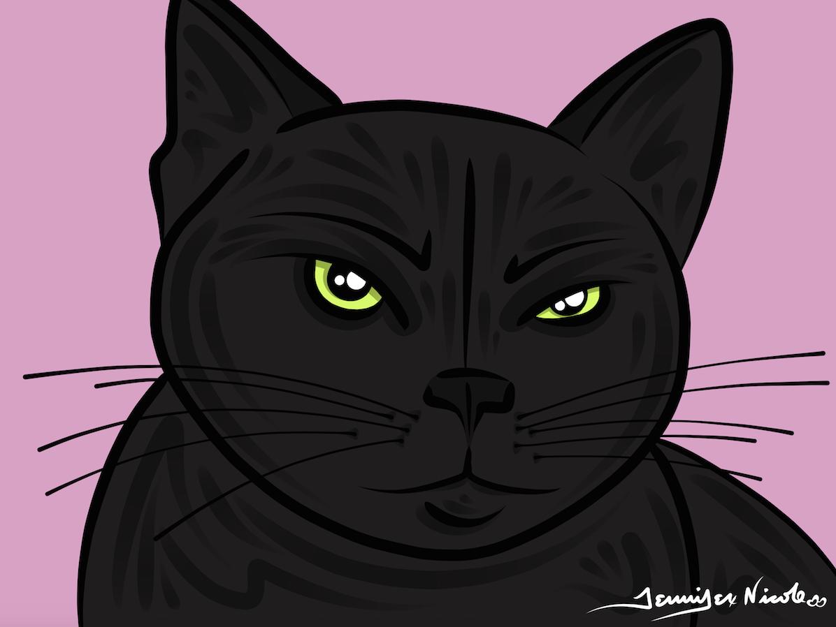 3-13-15 Black Cat
