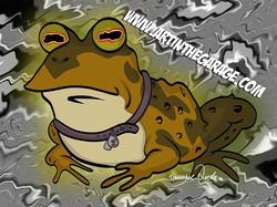 2-10-20 Hypno Toad