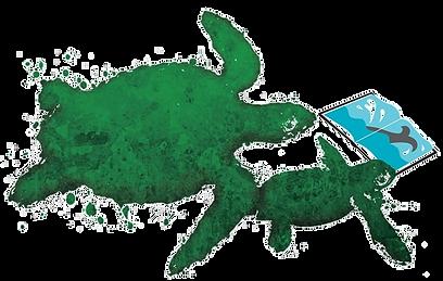 turtle%25202_edited_edited.png