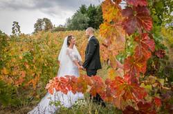 Sposi nelle vigne autunnali