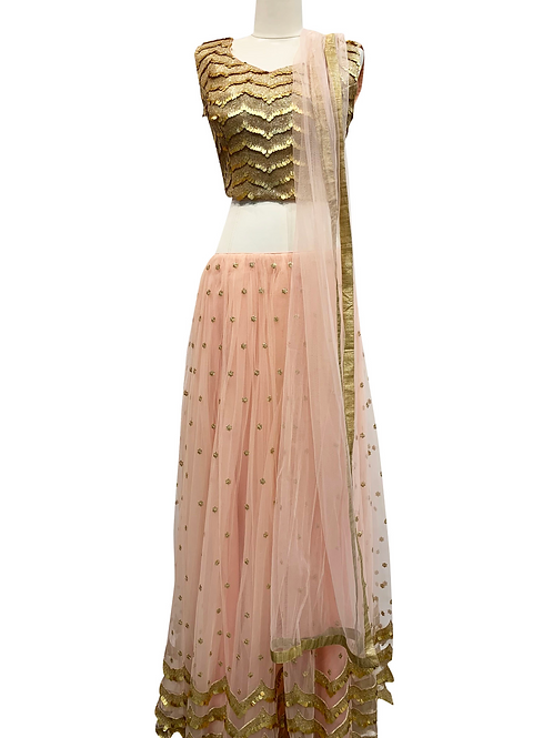 Coral  Lehenga with Heavy Gold Blouse